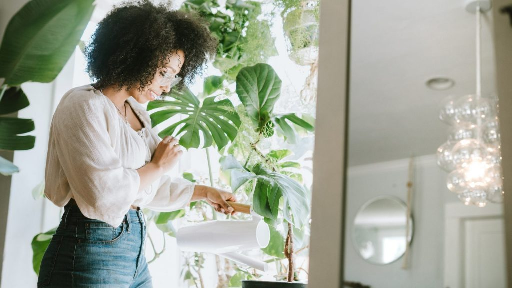 How to Keep Your Plants Alive