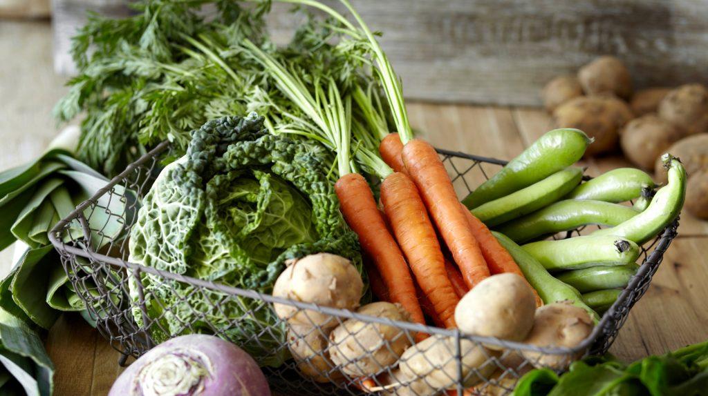 Grow Your Vegetables Indoors This Winter